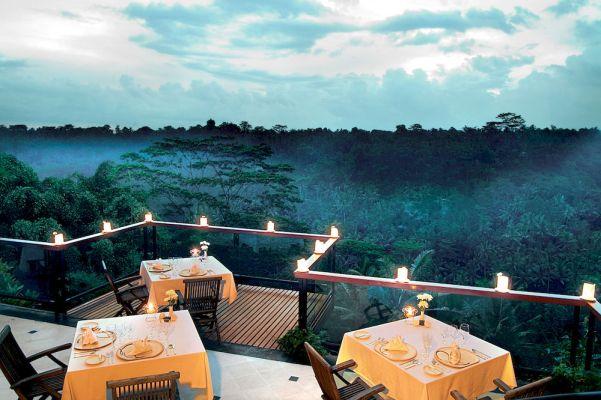 Jungle Retreat Bali